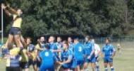 Arechi Rugby verso la meta del successo: prima di campionato contro i Wolves