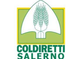 Coldiretti, torna a Salerno il mercato domenicale di Campagna Amica