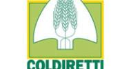 Emergenza Coronavirus, florovivaismo in crisi: l'allarme di Coldiretti