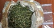 Roccadaspide, Polizia arresta pregiudicato ai domiciliari per droga